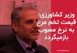 وزیر جهاد کشاورزی: دو روز آینده قیمت تخم مرغ به نرخ مصوب باز خواهد گشت