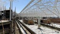 متروی هشتگرد تا پایان شهریور احتمالا راهاندازی میشود / منطقه یک آزادراه تهران شمال تا چند ماه آینده افتتاح خواهد شد