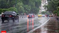 باران تهران باعث پر شدن سفره های زیر زمینی نمی شود