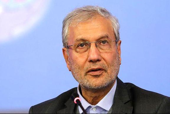 علی ربیعی: فشارها به دولت بی حد و حصر است