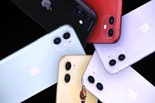 کدام گوشی جدید آیفون طرفدار بیشتری دارد؟