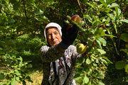 واردات 23 میلیون تن محصولات کشاورزی و اساسی از ابتدای سال