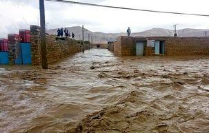 سواحل گرگانرود باید از سکنه خالی شود/در حال حاضر اولویت ما جلوگیری از ورود سیلاب به روستاها و شهرها است.