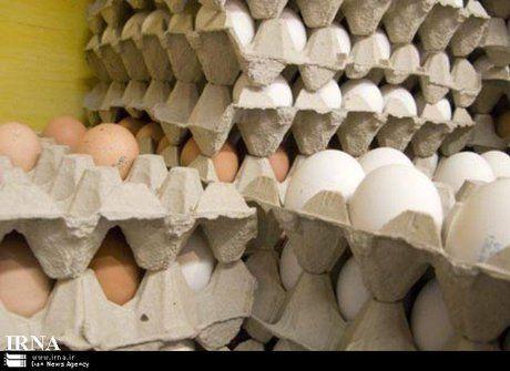 قیمت هر شانه تخم مرغ نزدیک به 40 هزار تومان شد