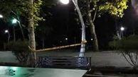 فوت  نوجوان ۱۴ ساله بر اثر برق گرفتگی در پارک لاله تهران