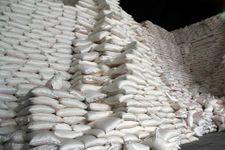 شکر ارزان می شود/ واردات ۸۰۰ هزار تن شکر  به کشور