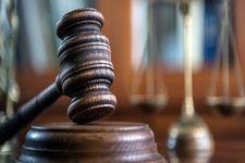 رأی متهمان پرونده جاسوسی محیط زیستی صادر شد