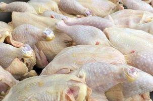 قیمت مرغ مرز 12 هزار و 500 تومان را پشت سر گذاشت