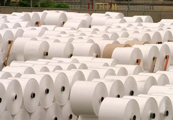 دلایل گرانی کاغذ بیان شد/ ترخیص 105 هزار تن کاغذ با مجوز وزارت صمت