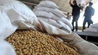 دولت چین برخی تعرفههای وضع شده بر سویا و گوشت خوک آمریکا را حذف کرد