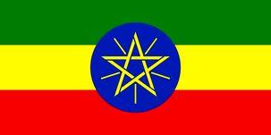 کرونا مانع برگزاری انتخابات در اتیوپی شد/تا اطلاع ثانوی انتخابات به تعویق افتاد