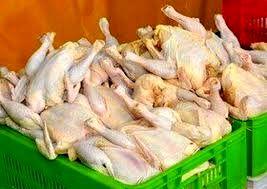 افزایش قیمت مرغ در برخی استان ها باعث ممنوعیت خروج آن از استان شد