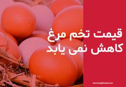 تخممرغ به هیچ وعدهای رحم نمیکند/قیمت تخم مرغ کاهش نمی یابد