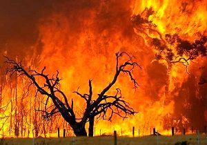 گسترش آتشسوزی جنگلی در مرکز ایالت واشنگتن