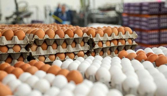 عوارض 3500 تومانی به ازای هر کیلو تخممرغ تمدید شد