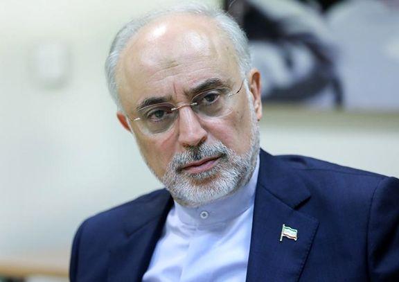 صالحی: حضور در انتخابات برای بنده، مقبول و ممدوح نیست