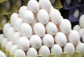 قیمت مرغ نسبت به ماه گذشته 10 درصد کاهش یافت/قیمت برنج همچنان افزایشی است