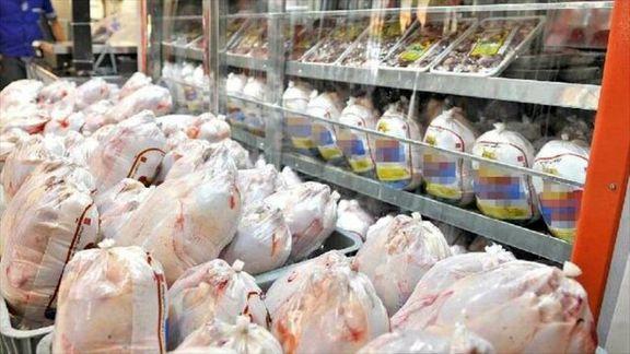 در تهران 1600 تن مرغ منجمد در پایتخت توزیع خواهد شد
