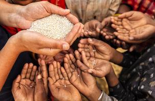تعداد گرسنگان جهان اعلام شد