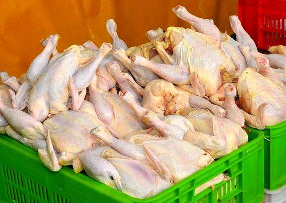قیمت مرغ کاهش یافت/  هرکیلو  ۱۳ هزار و ۵۰۰ تومان