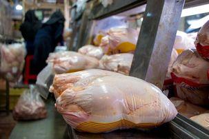 گران شدن قیمت گوشت قرمز و افزایش تقاضا برای مرغ توسط مردم دلیل گرانی مرغ اعلام شد