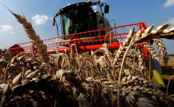 خشکسالی خرید گندم ایران از بازار جهانی را فزایش داد