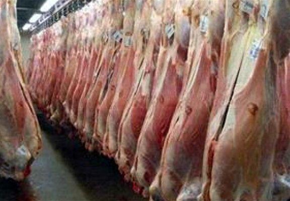 قیمت گوشت قرمز 70 هزار تومان /  مرغ تازه 11 هزار و 500 تومان