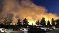 تصوری غلط که آتش به جان محیط زیست می اندازد!
