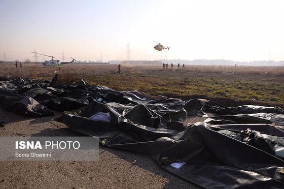 فوری: لیست افراد جان باخته در حادثه سقوط هواپیمای اوکراینی به صورت کامل منتشر شد