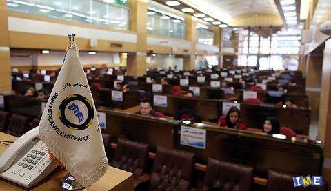 عرضه ذرت سه استان در بورس کالا تا پایان سال