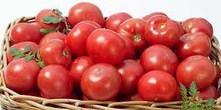 قیمت گوجه فرنگی تا 20 آذرماه ارزان می شود