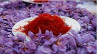 صادرات زعفران بیش از ۳ برابر رشد کرد/ افزایش کشورهای هدف صادراتی به ۶۴ کشور