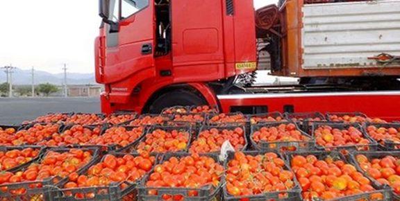 اولین محموله گوجه فرنگی صادراتی برگشتی از عراق،  وارد کشور شد