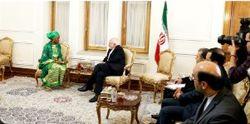 نماینده مقیم برنامه عمران ملل متحد  در ایران با ظریف دیدار کرد