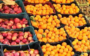 طرح تنظیم بازار میوه روزهای پایانی سال و شب عید / آغاز بارگیری و حمل پرتقال استان مازندران به سراسر کشور