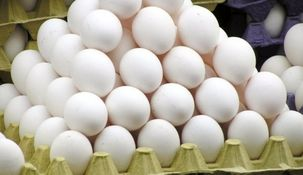 نرخ مصوب هر شانه تخم مرغ ۱۳ هزار و ۸۰۰ تومان