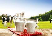 قیمت انواع شیر در فروشگاه ها
