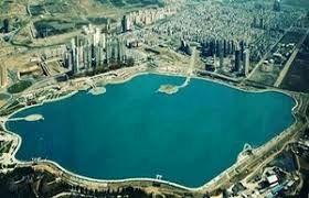 ماهی سر سوسماری در دریاچه چیتگر وجود دارد
