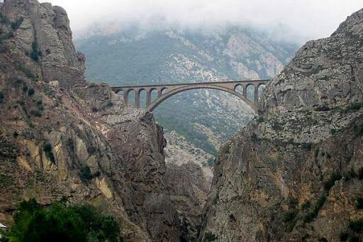 گردشگران خارجی برای سفر  ریلی به ایران ابراز علاقه کردهاند