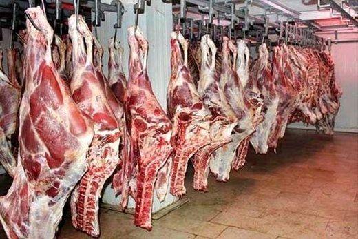 گوشت ارزان شد