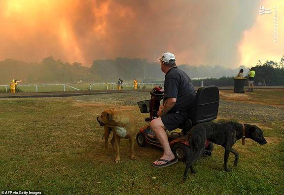28 کشته و تخریب 2000 خانه پیامد آتشسوزی استرالیا / محبوبیت نخستوزیر استرالیا 8 درصد کاهش یافت