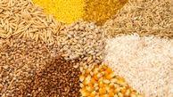 رشد قیمت ذرت/ نوسان قیمت برنج در بازار جهانی