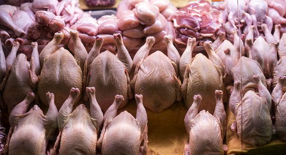 افزایش ۱۲۳ درصدی قیمت گوشت مرغ در اردیبهشت ۱۴۰۰