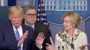 انتقاد دونالد ترامپ از هماهنگکننده برنامه مبارزه با کروناویروس در کاخ سفید