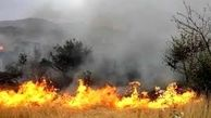 آتش سوزی «بوزین و مره خیل» جان 3 محیط بان را گرفت