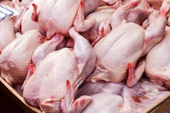 امروز بیش از 3 میلیون و 851 قطعه مرغ کشتار وارد بازار شد