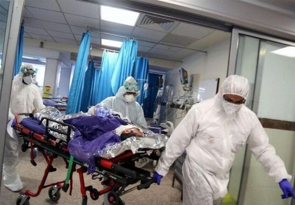فوت ۵۶۴ نفر در شبانه روز گذشته