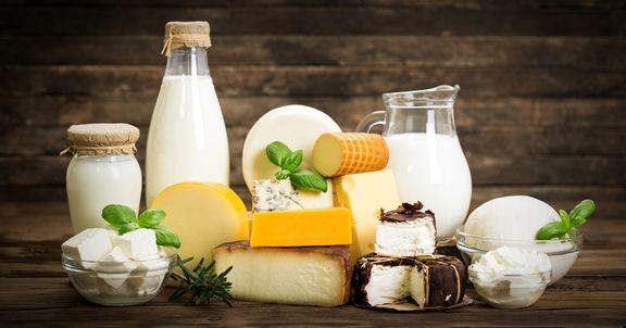 هرگونه افزایش قیمت در لبنیات غیرقانونی است/هیچ ابلاغیه ای مبنی بر افزایش قیمت شیرخام صادر نشده است