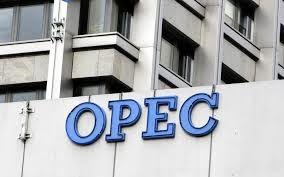 ثبات قیمت نفت برای اوپک ضروری است