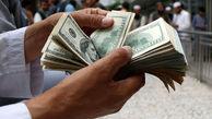 کاهش تصنعی نرخ دلار به سود هیچ کسی نیست/ ارزپاشی باعث ایجاد یک شوک جدید ارزی میشود